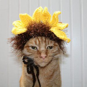 HANDMADE Crochet Hairy Wig Sunflower Dog Cat Hat